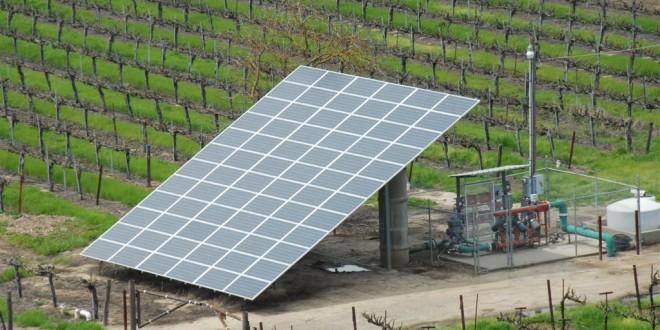 تشجيع استعمالات الطاقة الشمسية في القطاع الفلاحي يهم مساحة مزروعة اجمالية تقدر بـ 100 ألف هكتار