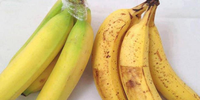 هل تعرف كيف يمكن الحفاظ على الموز في الجو العادي لأطول فترة ممكنة؟