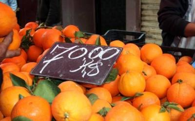 الجزائر :ارتفاع أسعار البرتقال مع نهاية فترة الجني بالمحمدية في معسكر