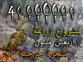 لبنان تطلق أضخم مشروع تشجير في العالم بزراعة أربعين مليون شجرة حرجية