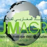 union-magrabi