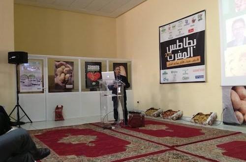 """مدينة الجديدة تحتضن مؤتمرا دوليا حول موضوع """"بطاطس المغرب"""""""