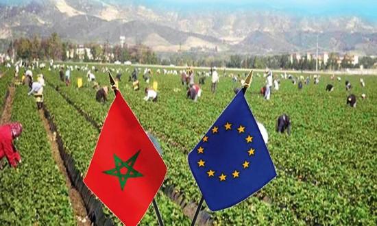 وأخيرا المغرب ينتصر لنفسه فلاحيا