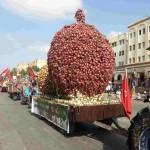 مهرجان الوطني للبصل بالحاجب ما بين 22 و24 غشت