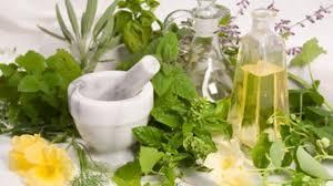 لقاء حول النباتات العطرية والطبية بمدينة الحسيمة