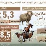 وزارة الفلاحة: عدد الأغنام والماعز يفوق الطلب في عيد الأضحى