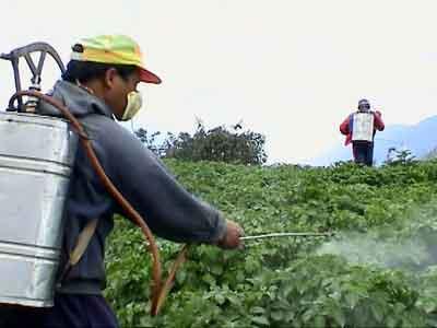 الآثار البيئية لمبيدات الآفات