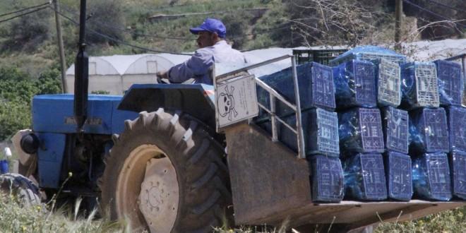 المستوطنات الزراعية شبح يُطارد الفلسطينيين