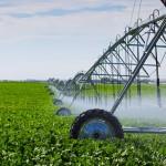 فلاحو منطقة اللوكوس يرحبون بقرار الإعفاء من وجبية مياه الري
