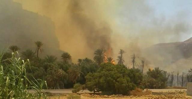 حريق مهول يأتي على واحة بطاطا .. والنيران تهدد أرواح الساكنة