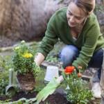 علاجات طبيعية للحدائق المنزلية