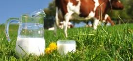 استخدام مسحوق الحليب في صناعة الحليب المبستر والحليب المعقم محظور منذ سنة 2000 (وزارة)