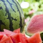 تراجع قياسي في صادرات البطيخ .. والاستهلاك الداخلي يسد العجز
