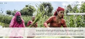 """منظمة """"الفاو"""" تطلق منصة الكترونية جديدة للزراعة الذكية مناخياً"""