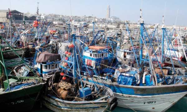 مستشار لمحكمة العدل الأوروبية يوصي بإلغاء إتفاقية الصيد البحري مع المغرب